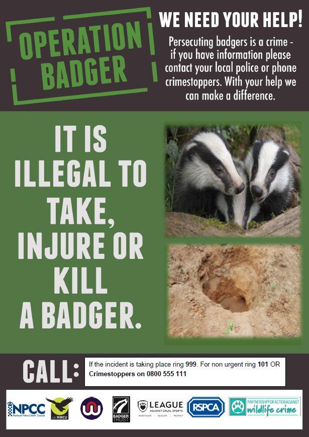 Click to open Operation Badger PDF