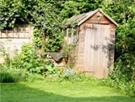 A shed in the corner of a rear garden.
